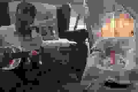 """Bài hát người cha dành cho con gái 11 ngày tuổi gây """"sốt"""""""