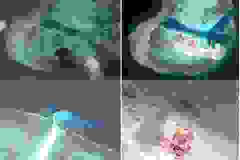 Cuộc chiến pháp lý ở Biển Đông: Sức lan tỏa của lẽ phải