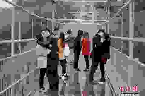 Các cặp đôi chia tay đời độc thân trên cầu thủy tinh