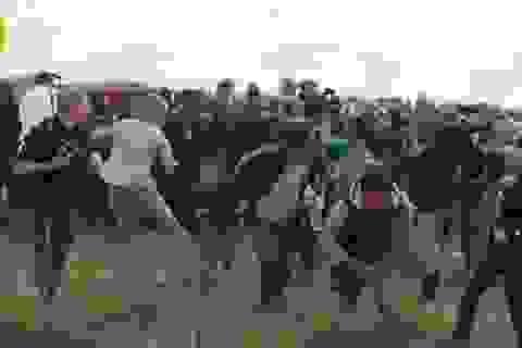 Nữ quay phim trần tình về vụ ngáng chân người tị nạn