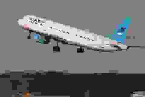 Tìm thấy 100 thi thể tại hiện trường vụ rơi máy bay Nga tại Ai Cập