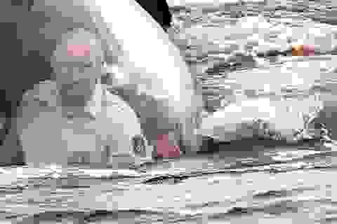"""Putin đáp trả chỉ trích về Crimea: """"Đã xong, xin chấm hết"""""""