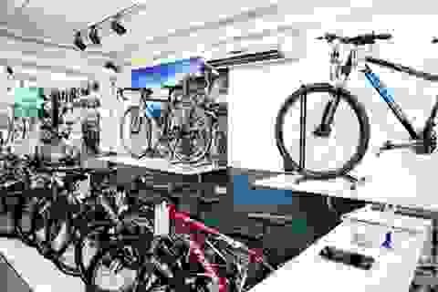 Xe đạp nội: Cuộc đối đầu không cân sức với hàng ngoại