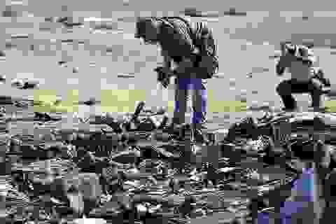 Châu Âu đã cảnh báo an ninh hàng không tại Sinai từ 1 năm trước