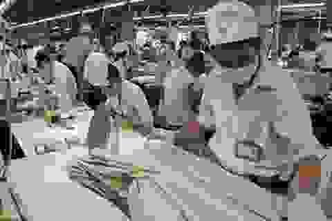 TP HCM: cần tuyển 23.000 lao động trong tháng 9