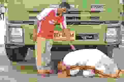 Cảm động bức ảnh tân cử nhân quỳ gối trước xe rác của cha