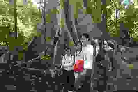 Lên Nam Cát Tiên ngắm thác và nghe kể truyền thuyết