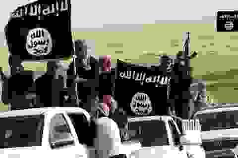 Mỹ để lọt xe Toyota vào tay IS ở Syria?