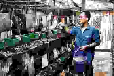 Làm giàu từ nuôi động vật hoang dã