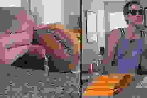 Thu về ngàn đô nhờ viết tin nhắn trên khoai tây