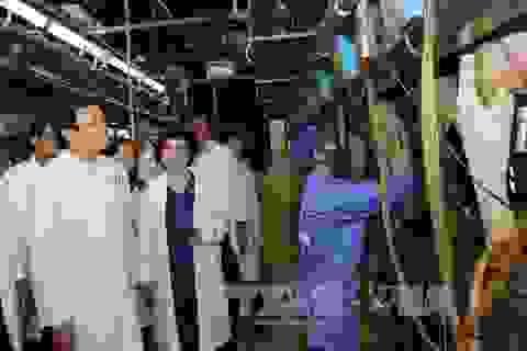 5 năm qua, tỉnh Nghệ An đã giữ được mức tăng trưởng tương đối