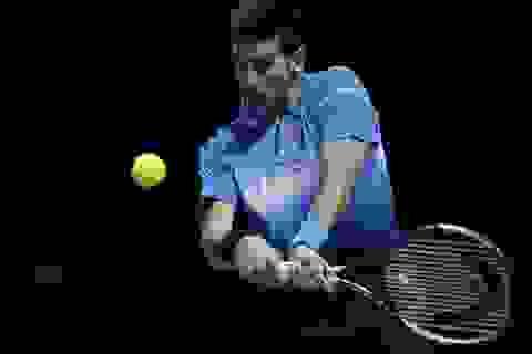 "Djokovic ""thổi bay"" Nishikori, Federer cũng thắng"