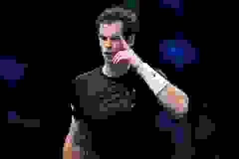Murray hay Wawrinka sẽ theo bước Nadal?
