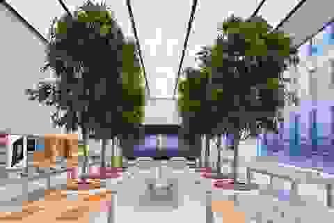 Ngắm Apple Store tuyệt đẹp đầu tiên do Jony Ive thiết kế