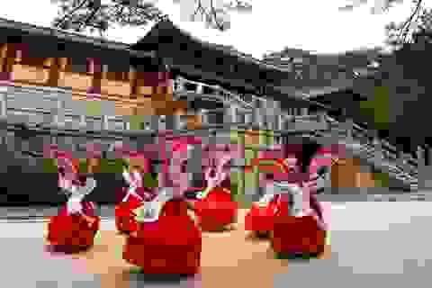 Khảo sát những địa điểm du lịch hàng đầu Hàn Quốc