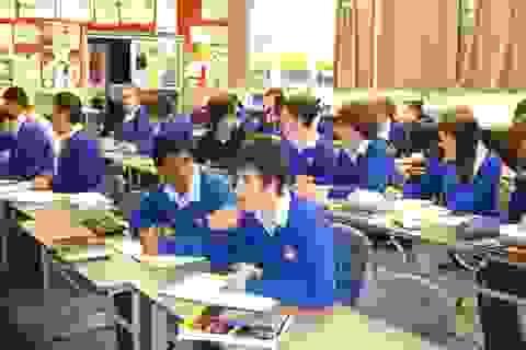 Chính sách du học New Zealand có gì mới