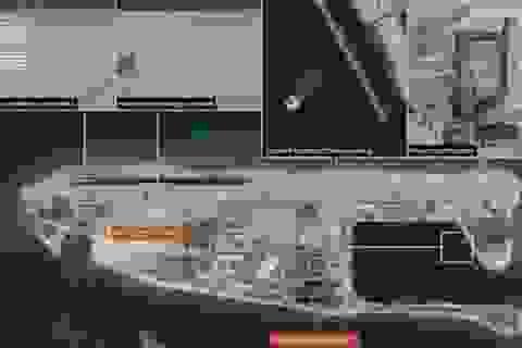 Yêu cầu LHQ điều tra Trung Quốc phá hoại môi trường biển Đông