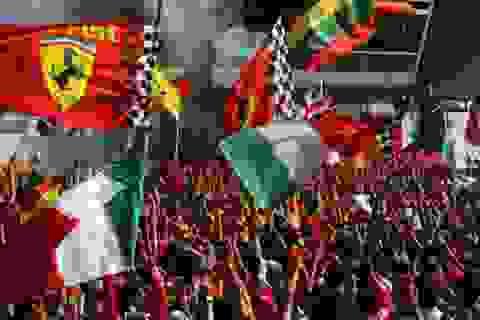 Hamilton giành pole trước sức ép của Ferrari