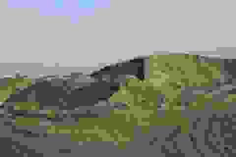 Cấp xã cho thuê đất trái luật, trách nhiệm huyện Đông Anh thế nào?