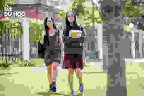 Trung học Mỹ - Cánh cửa dẫn đến các Trường Đại học hàng đầu
