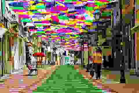 Khám phá con phố đầy màu sắc của Bồ Đào Nha