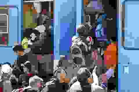 Kinh doanh trại tị nạn - một nghề vẫn hái ra tiền