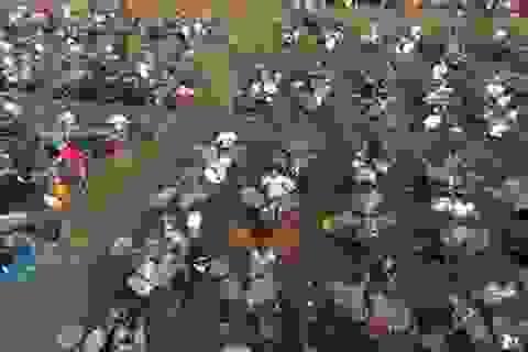 1000 người cùng chơi nhạc để mời thần tượng tới biểu diễn