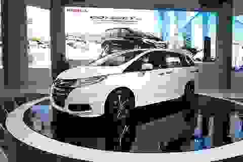 Honda Odyssey chào thị trường Việt Nam