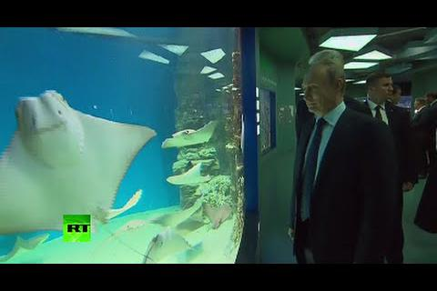 Ông Putin thăm bảo tàng hải dương học lớn nhất châu Âu