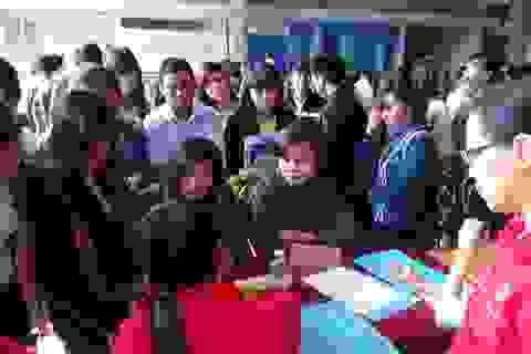Sẽ có sàn giao dịch trực tuyến việc làm trong lĩnh vực giáo dục