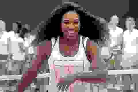 """Serena Williams """"bắt sống"""" tên trộm điện thoại"""
