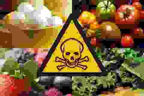 """10% dân số thế giới mắc bệnh do thực phẩm """"bẩn"""""""