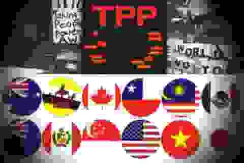 [Infographics] Các vấn đề kinh tế, đầu tư và tài chính trong TPP
