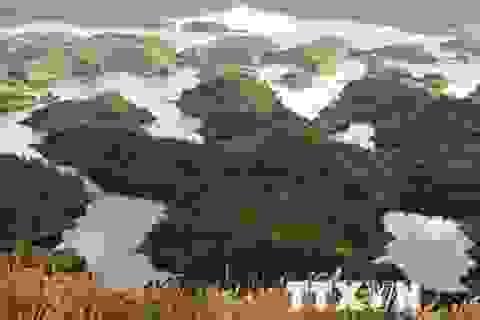 [Photo] Ấn tượng Tà Đùng-Hạ Long thu nhỏ ở Tây Nguyên