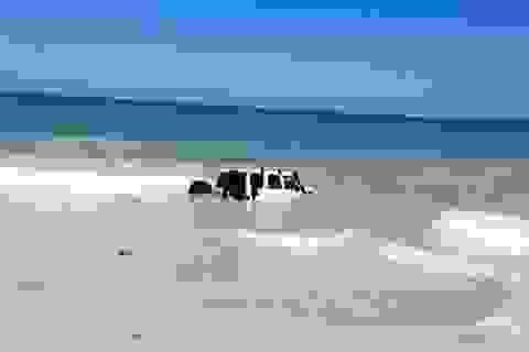 Kẻ trộm lao xe xuống biển để trốn cảnh sát