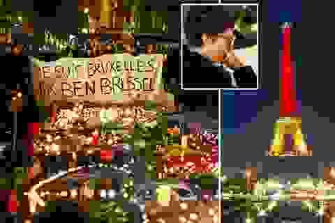 """Thế giới sát cánh thắp lên """"tinh thần Brussels"""" sau vụ khủng bố"""