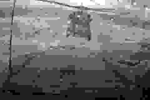 MH-60R Seahawk hạ cánh ngoạn mục trong sóng to bão lớn