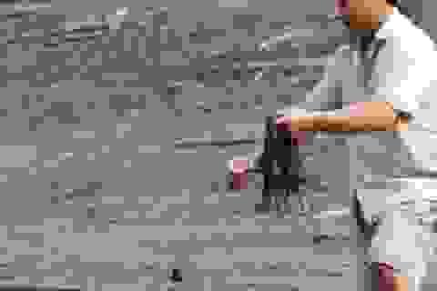 """Độc đáo nghề câu """"cá tiền triệu"""" ở miền Tây xứ Nghệ"""