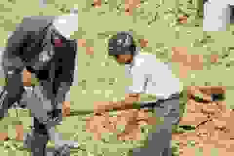 Từ vụ sập lò vôi: Chủ lơ là an toàn, người lao động lãnh đủ
