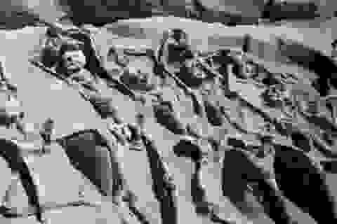 Bí ẩn 80 bộ xương người bị trói tay bằng xích ở Hy Lạp