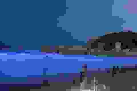 Bãi biển phát sáng xanh huyền bí trong đêm ở Trung Quốc