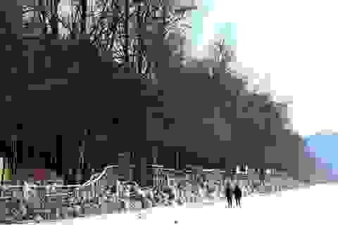 Trải nghiệm mùa đông ở xứ Kim chi