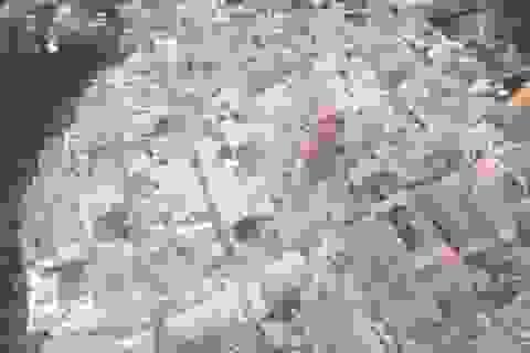 Động đất tàn phá miền trung Italy nhìn từ trên cao, số người chết tăng nhanh