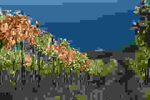 Mùa thu đẹp như tranh trên bán đảo Crimea