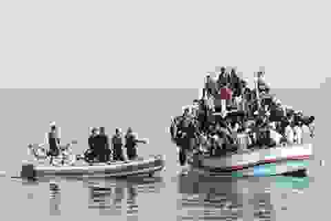 Interpol và cuộc chiến chống nhập cư bất hợp pháp
