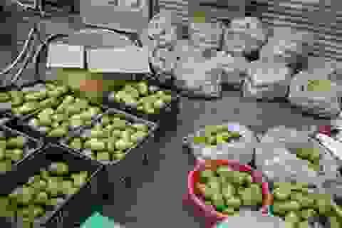 Ngày bán 1 tấn xoài Campuchia, đều tay lãi 5 triệu