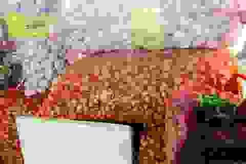 Ăn 280 tấn hành tỏi Trung Quốc mỗi ngày: Món ăn Việt gia vị Tàu