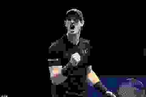Murray tranh cúp vô địch với Djokovic