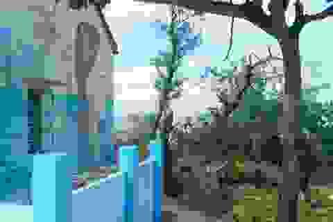 Độc đáo ngôi làng bích họa ở TP Tam Kỳ
