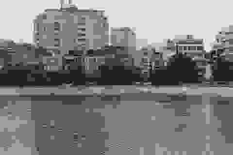 Người dân than khổ vì hồ Ngọc Khánh bốc mùi hôi thối